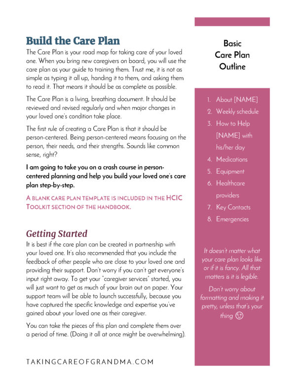 Head Caregiver in Charge HCIC Complete Handbook care plan preview